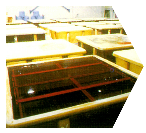 製造工程5